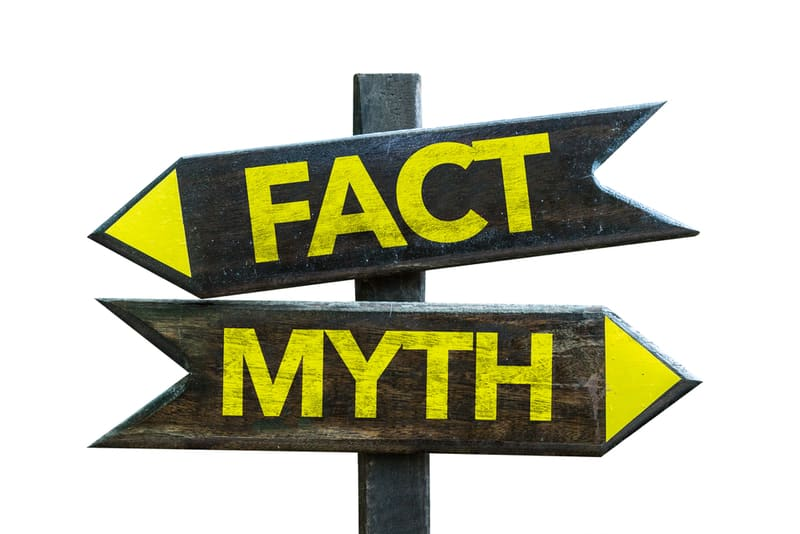 Common Misconceptions Professional Translator