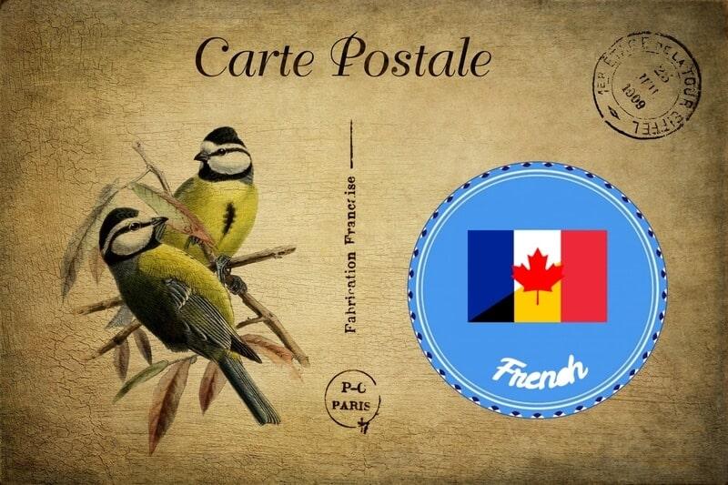 french translation